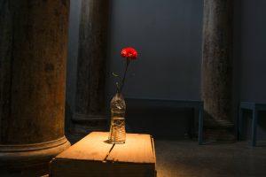 Foto colorida de um cravo vermelho colocado dentro de uma embalagem de vinagre que está em cima de um caixote de madeira. Esta pequena instalação se encontra na frente de uma coluna de sustentação de ferro que tem a cor ferrugem. Ao fundo vemos 2 bancos retangulares na cor azul escuro encostados em uma parede cinza e 2 outras colunas de sustentação. O piso desta sala é de cimento queimado.