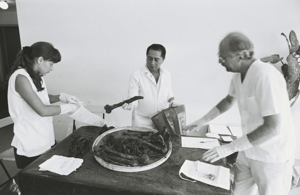 Foto em preto e branco de dois homens e uma mulher vestidos de branco e luvas manipulando ossos que estão sobre uma mesa.