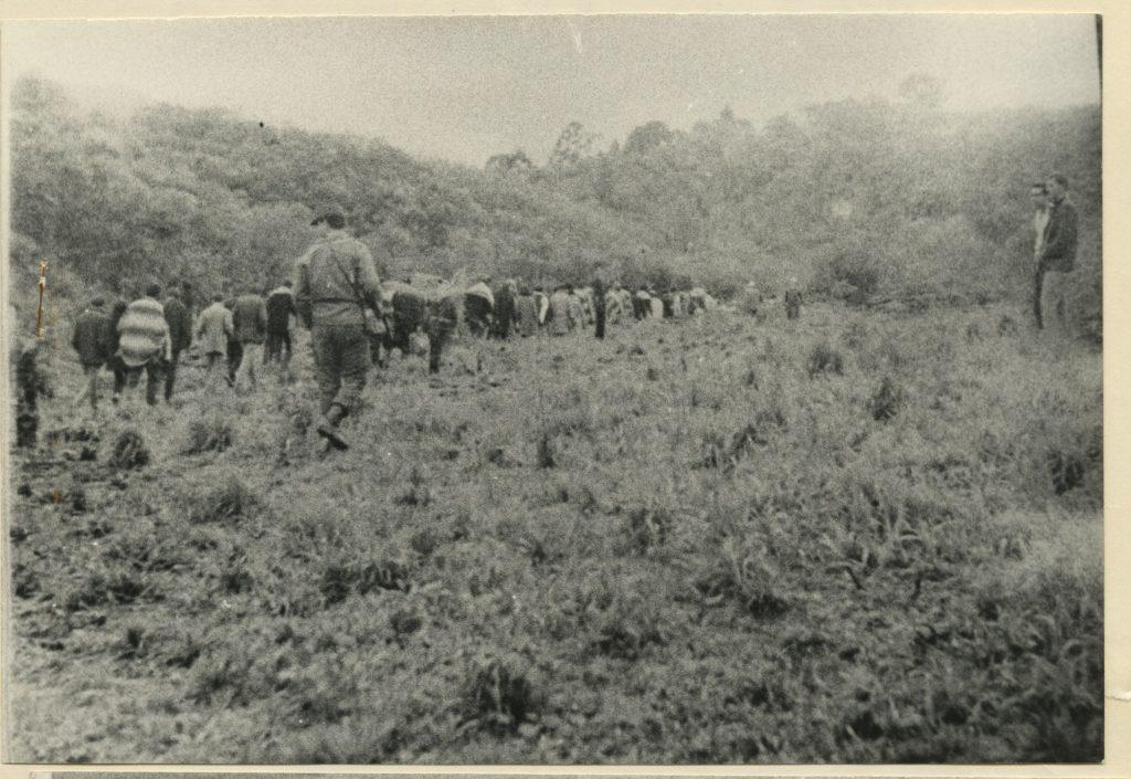 Foto em preto e branco de grupo de jovens enfileirados sendo conduzidos por um soldado. Eles estão caminhando em uma grama alta. Ao fundo, colinas.